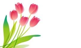 置かれた場所で咲きなさい  渡辺 和子 著